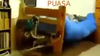 Download Video Video lucu kasur alarm sahur🤣😅 MP3 3GP MP4