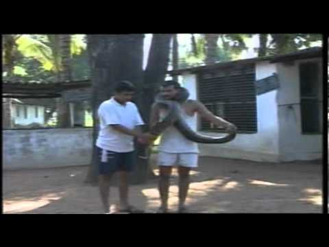 AMTE - Surabhi - Episode 196.MPG