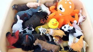 Learn Sea Animals Big Octopus and Wild Animals Names Farm Animals in Blue Water Shark Toys For Kids