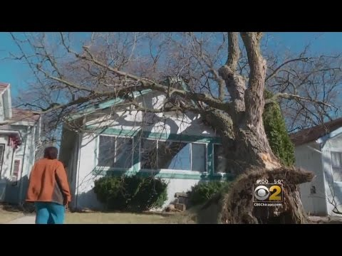 Mobile Weather Lab: Wind Batters Waukegan