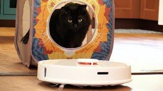 2 Cats REACT to a Robot Vacuum