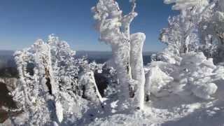 2013 12 25 明神平から桧塚奥峰へ霧氷ハイキング