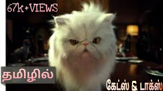 Cats and dogs(TAMIL DUBBED) funny