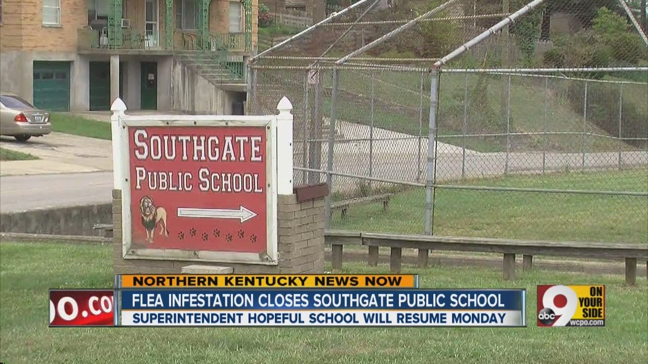 Southgate Independent Schools closed due to flea infestation