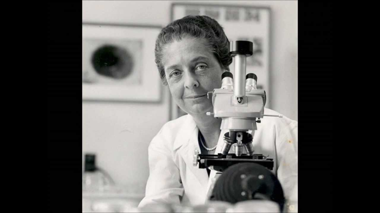 famous female scientists 14 greatest female scientists