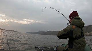 Вот так поклевка! Поставил эту приманку и поймал ! Рыбалка на спиннинг.