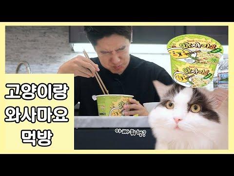 고양이랑 와사마요 먹방 - 너무 맛있어서 나오는 표정입니다