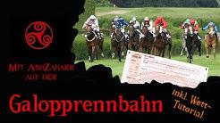 Unterwegs/AshZaharr informiert: Auf der Galopprennbahn Düsseldorf - mit Wett-Tutorial