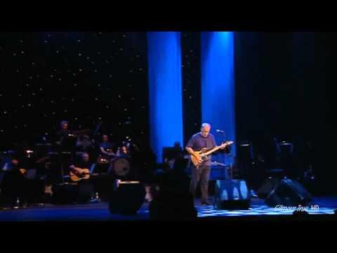 David Gilmour - Don't (by Elvis Presley)HD.webm