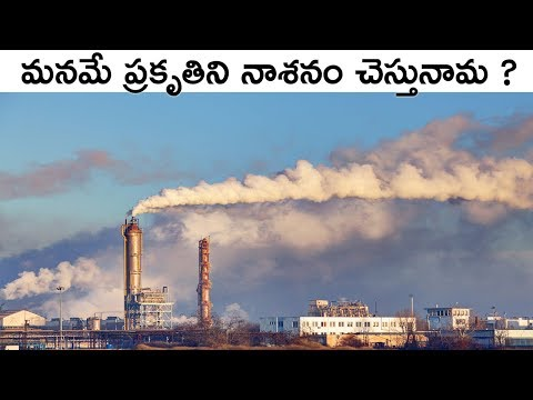 Environmental Impacts On Humans Explained In Telugu | Save Environment