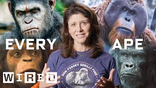 Every Ape in Planet of the Apes Explained   WIRED