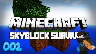 Skyblock SB #1:  STARTING OUT!