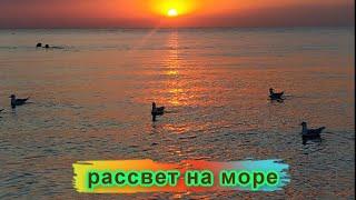 морской рассвет что может быть прекраснее на это можно смотреть вечно и слушать шум волн