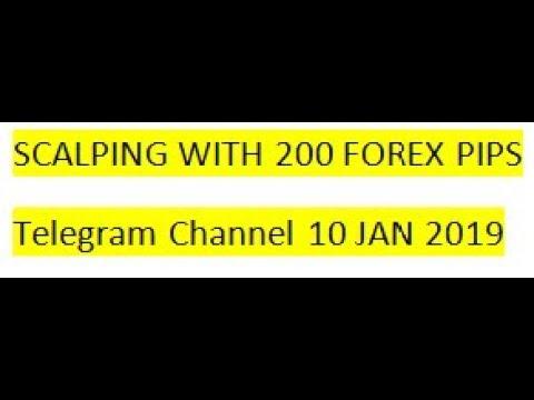 Day trading forex telegram