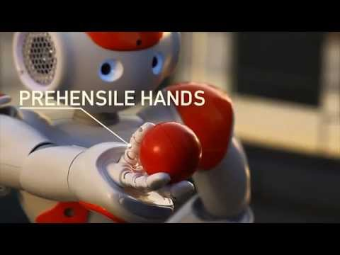 NAO Next Gen : the new robot of Aldebaran Robotics
