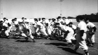 Brooklyn Dodgers, New York Yankees, and Chicago White Sox baseball teams practice...HD Stock Footage