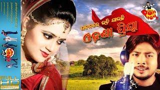 Pabanare Udi Jauchi Odhoni Priya Making I Odia Adhunika Song I Papu PoM PoM Creations