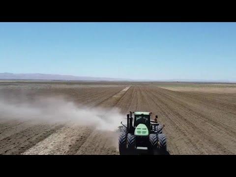 California farmers struggle under severe drought