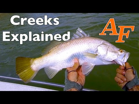 How To Fish Creeks With Lures Saltwater Creek Explained Andysfishing Andy's Fishing Video EP.230
