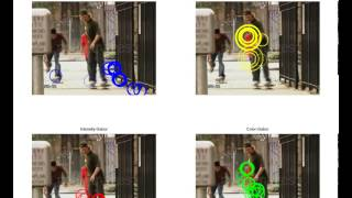 Evaluation of Color STIPs for Human Action Recognition