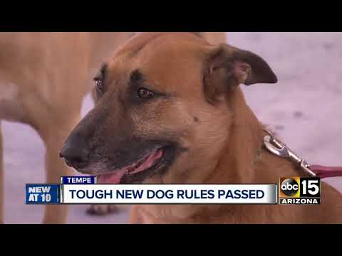 Tempe City Council approves new dog law