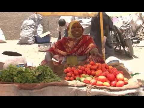 Autonomisation des femmes au Sahel: Rencontre du Comité de Pilotage du projet SWEDD