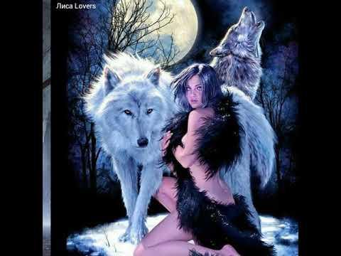 Картинки волки под песню