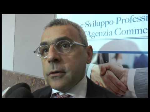 Napoli - Convegno sulla crisi delle agenzia di commercio (24.03.14)