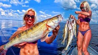 ОГРОМНЫЕ СУДАКИ РВУТ ЭТИ ПРИМАНКИ В КЛОЧЬЯ Рыбалка на судака 2021 Ловля судака летом на джиг