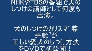 犬のしつけ教室詳細はこちら⇒http://www.infotop.jp/click.php?aid=1162...