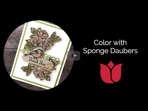 Color With Stampin' Up! Sponge Daubers
