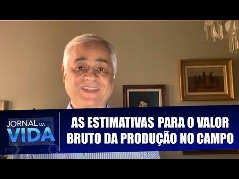 As estimativas para o valor bruto da produção no campo - Boa Notícia - Jornal da Vida - 13/08/20