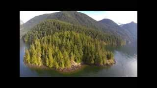 Gosling Island, Pitt Lake - 6.1 Acre Island For Sale