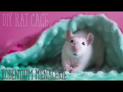 DIY |  Metal Shelving Rat Cage  |