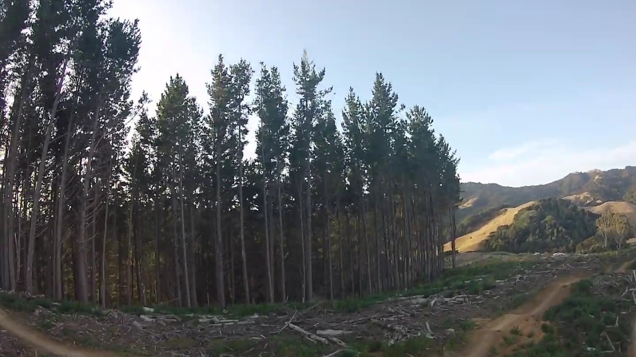 440 mtb bikepark / Chinese Laundry / race drone chase картинки