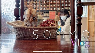 직장인 브이로그 | 점심시간(ft.파주 카페) vlog…