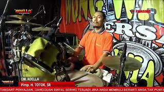 Hanya Satu | Andy KDI feat Arneta Julia | OM ADELLA Live Wong Wangkal Bersatu