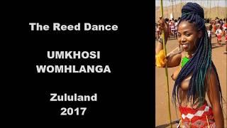 The Zulu Reed dance 2017