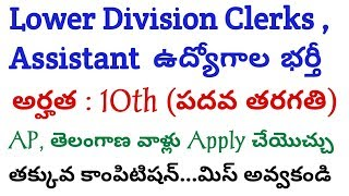 Latest Govt Jobs | Lower Division Clerk, Assistant Jobs for AP and Telangana