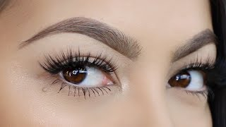 Updated Brows Routine-  Perfect Brows Tutorial