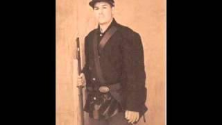 The 81st IL./15th NW Arkansas Civil War