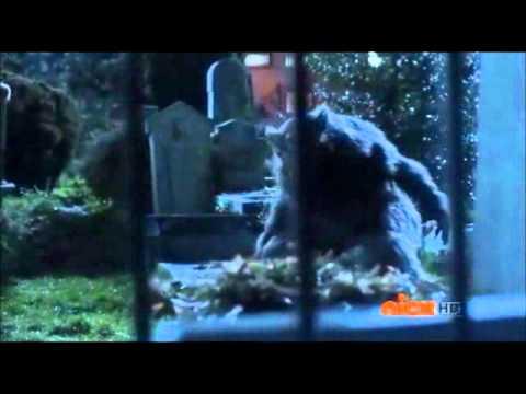 The Boy Who Cried Werewolf- Thriller