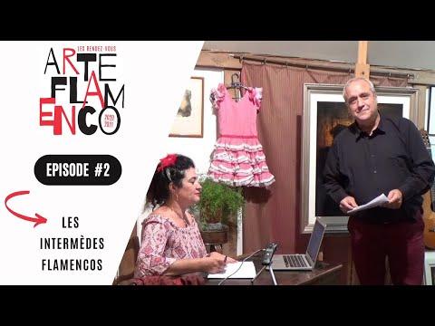 [ Épisode 2 ] Les Rendez-vous Arte Flamenco, c'est aussi des Intermèdes flamencos