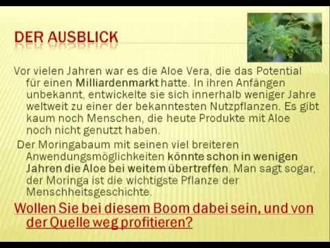 Moringa Oleifera Deutsch | Moringa Webinar | Moringa Oleifera Baum