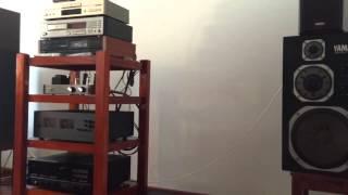 Yamaha NS1000M. Sound amazing.