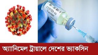 আশার খবর শোনালো দেশের ওষুধ প্রশাসন | Corona Vaccine In BD | Somoy TV