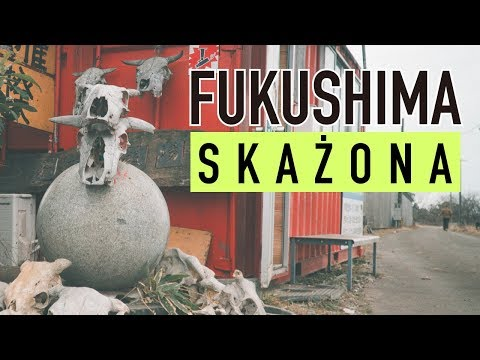 Napromieniowane krowy w Fukushimie - True Fukushima #2