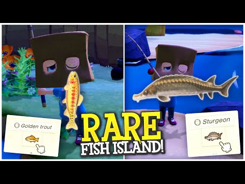 I FOUND RARE FISH ISLAND! GOLDEN TROUT HUNTING! - Animal Crossing New Horizons