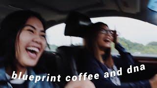 blueprint coffee and dna (vlog_13)