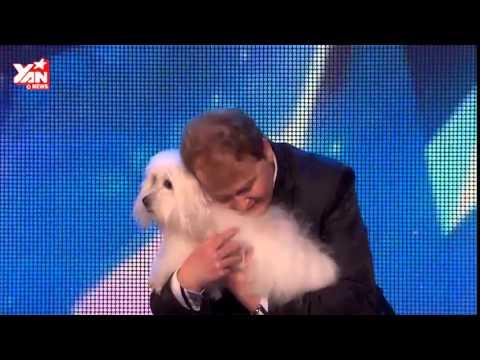 Chú chó biết nói làm rúng động thế giới Talking Dog Britain